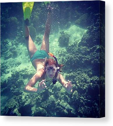 Snorkling Canvas Prints