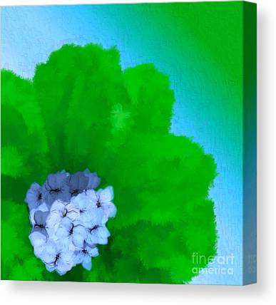 Holley Jacobs Canvas Prints