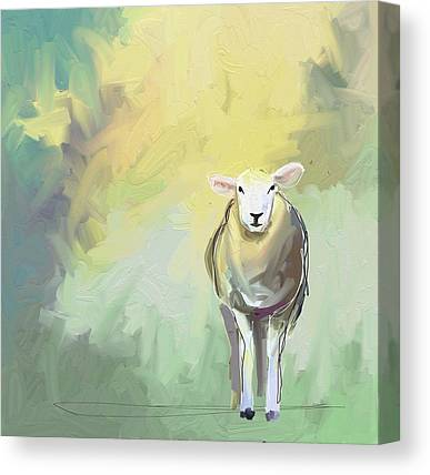 Sheep Canvas Prints