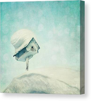 Birdhouse Canvas Prints