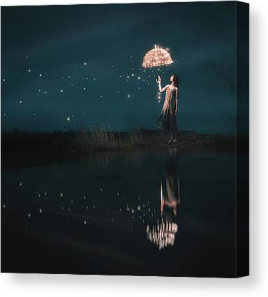 Shooting Star Canvas Prints