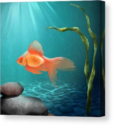 Fish Pond Digital Art Canvas Prints