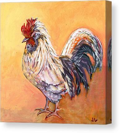 Chicken Portrait Canvas Prints