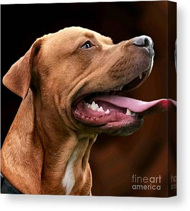 Tongue Canvas Prints