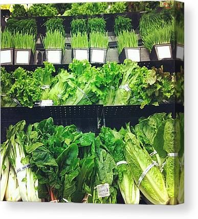 Lettuce Canvas Prints