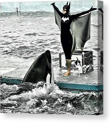 Orcas Canvas Prints