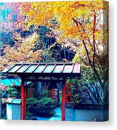 Tea Leaves Canvas Prints