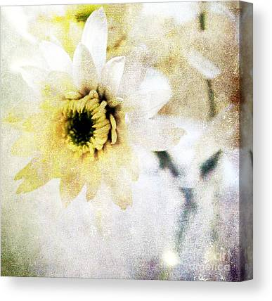 Yellow Daisy Canvas Prints