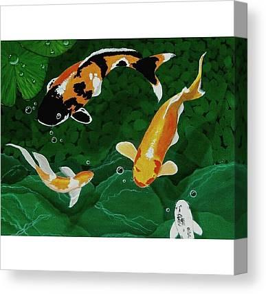 Goldfish Canvas Prints