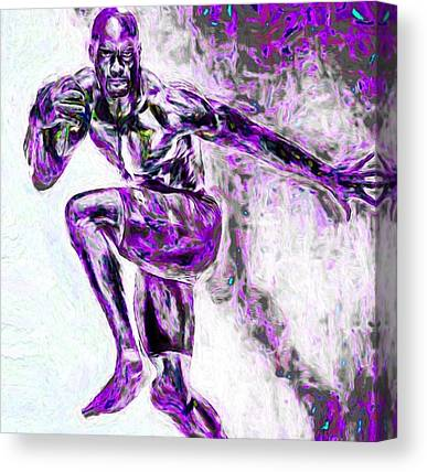 Minnesota Vikings Canvas Prints
