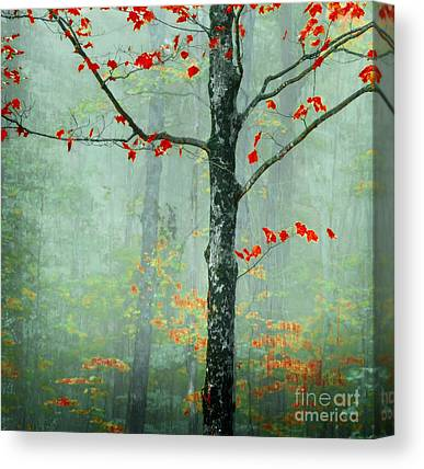 New England Autumn Canvas Prints