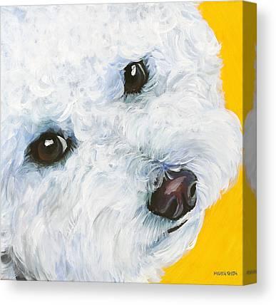 Bichon Canvas Prints