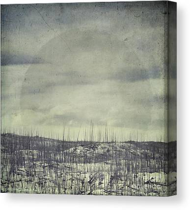 Leaden Sky Canvas Prints