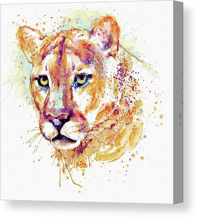 Lion Mixed Media Canvas Prints