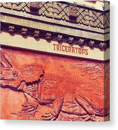 Triceratops Canvas Prints