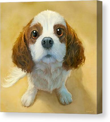Spaniels Canvas Prints