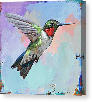 Hummingbird Paintings Canvas Prints