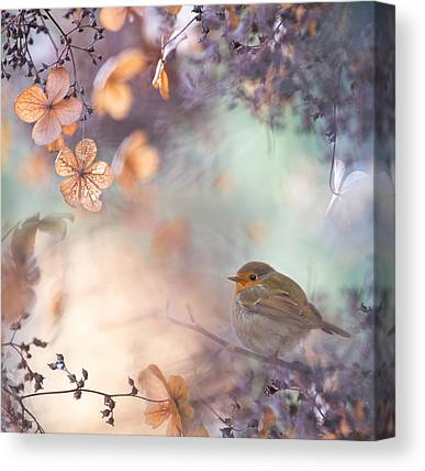 Perching Birds Canvas Prints