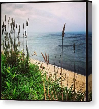 Beach Cliffs Canvas Prints