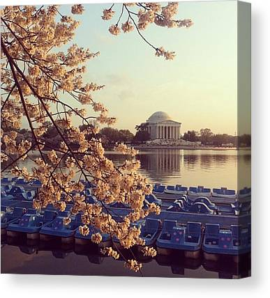 Jefferson Memorial Canvas Prints