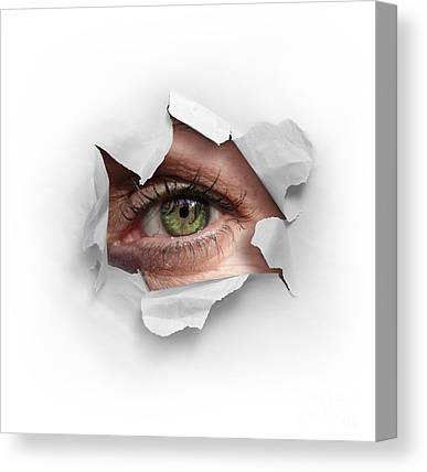 Surveillance Canvas Prints