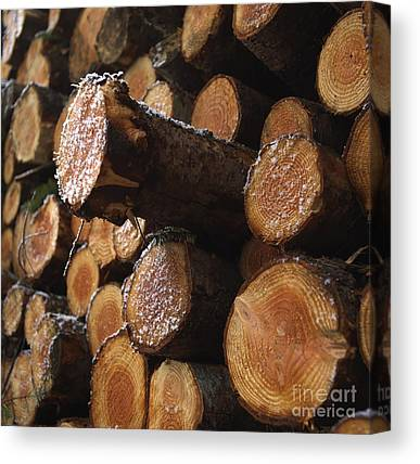 Woodpile Canvas Prints