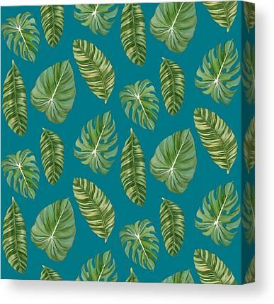 Tropical Rainforests Canvas Prints