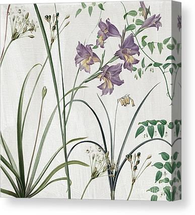 Lilac Flower Canvas Prints