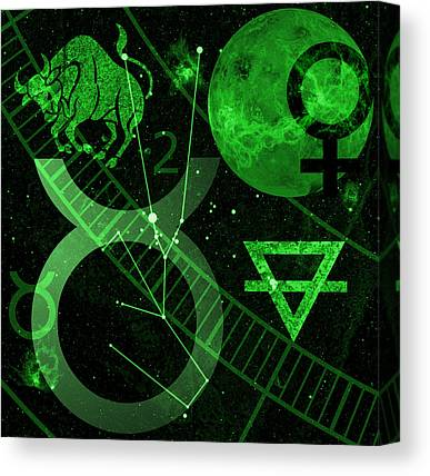 Constellations Canvas Prints
