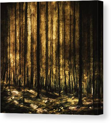 Autum Abstract Canvas Prints