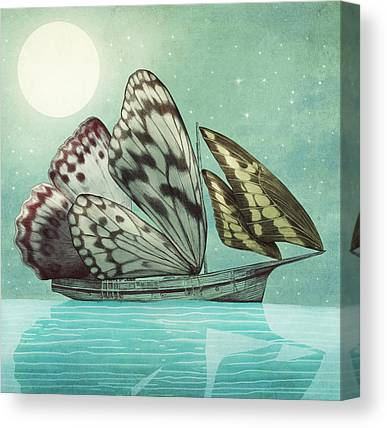 Butterfly Drawings Canvas Prints