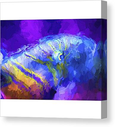 Bass Fishing Canvas Prints