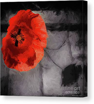 Independance Day Mixed Media Canvas Prints