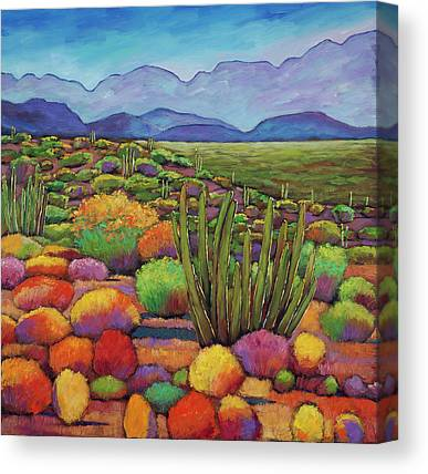 Arizona Desert Canvas Prints