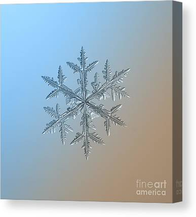 Dendrite Canvas Prints