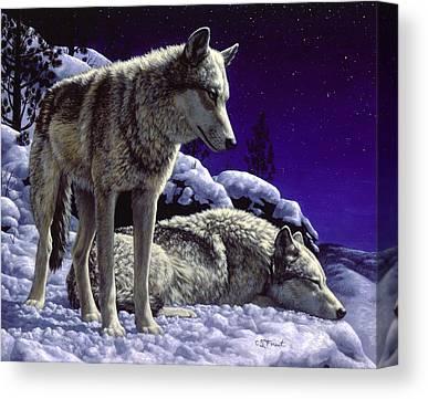 Gray Wolves Canvas Prints