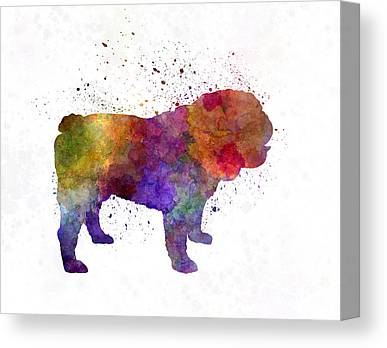 Old English Bulldog Canvas Prints Fine Art America