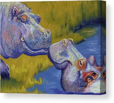 Hippopotamus Canvas Prints