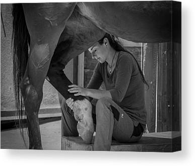 Girl And Horse Canvas Prints
