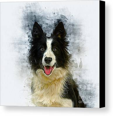 Designs Similar to Border Collie by Ian Mitchell