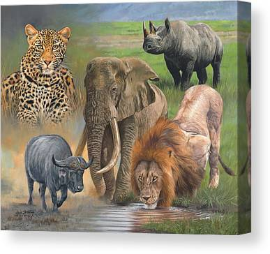 Rhinocerus Canvas Prints