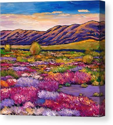Southwestern Canvas Prints