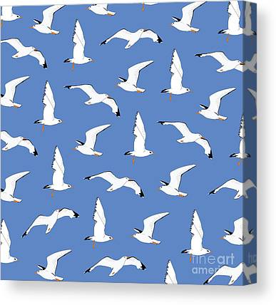 Seagull Canvas Prints