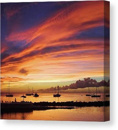 Tobago Canvas Prints