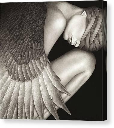 Black Wings Canvas Prints
