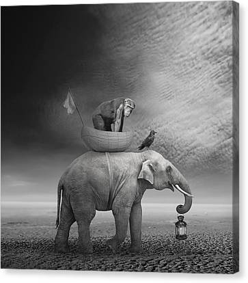 Elephants Canvas Print - ... .. by Beata Bieniak