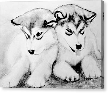 # 10 Siberian Husky Puppies Canvas Print