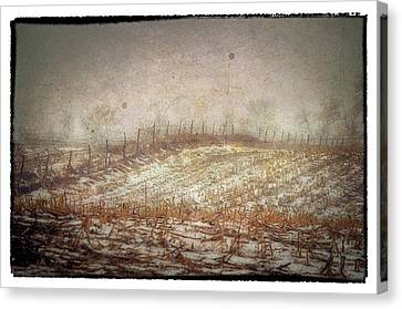 A Cold Field Canvas Print