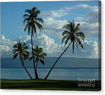 A Little Bit Of Paradise Canvas Print