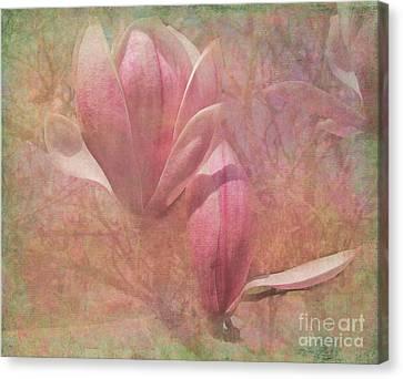 A Peek Of Spring Canvas Print by Arlene Carmel